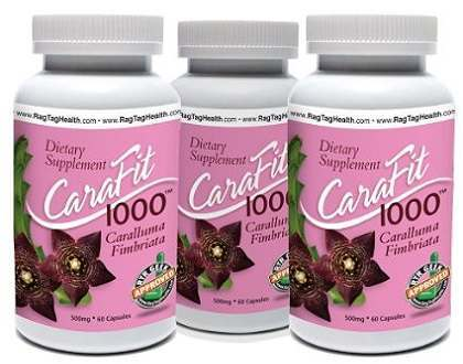 CaraFit 1000 Caralluma Fimbriata Supplement for Weight Loss