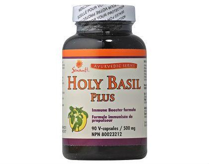 Sewanti Holy Basil