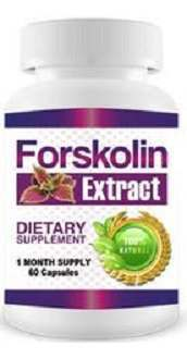 Forskolin Diet Dr Supplement for Weight Loss